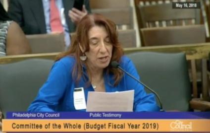 Lynda Rubin City Council testimony 5-16-18